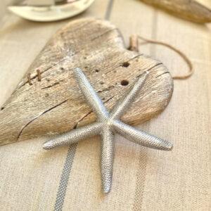Metal Starfish